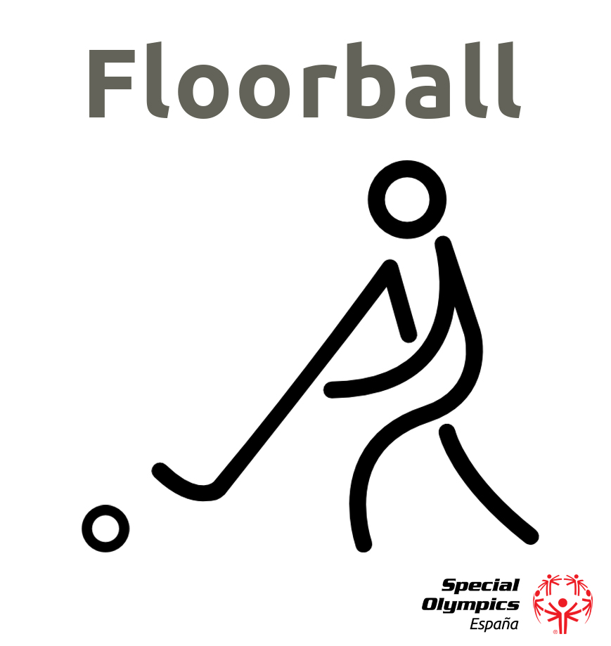 Técnico Deportivo de Floorball